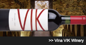 Vina VIK Winery